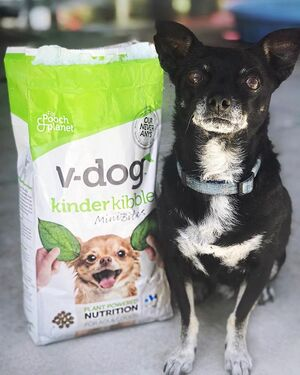 "Otis waiting on his breakfast🌱🐾 ""Mom, I don't have thumbs and this @vdogfood aint gonna pour itself!"" he tells me🙄🐶 I've never seen these dogs gobble up their food the way they do now, AND it's vegan! 🌱🌱Their coats are so soft now too😊😊😊 #vdog #vdogfood"